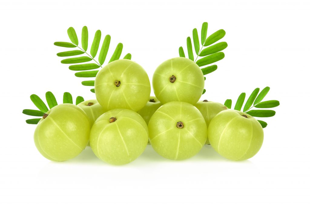 Researchers may have found a connection between Amla fruit products and hair growth in a study measuring the hair growth in rabbits (1).