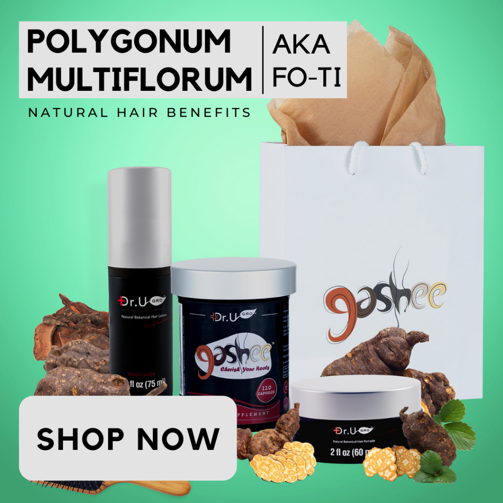 Polygonum Multiflorum, also known as fo-ti, is an ingredient in all Gashee hair products.