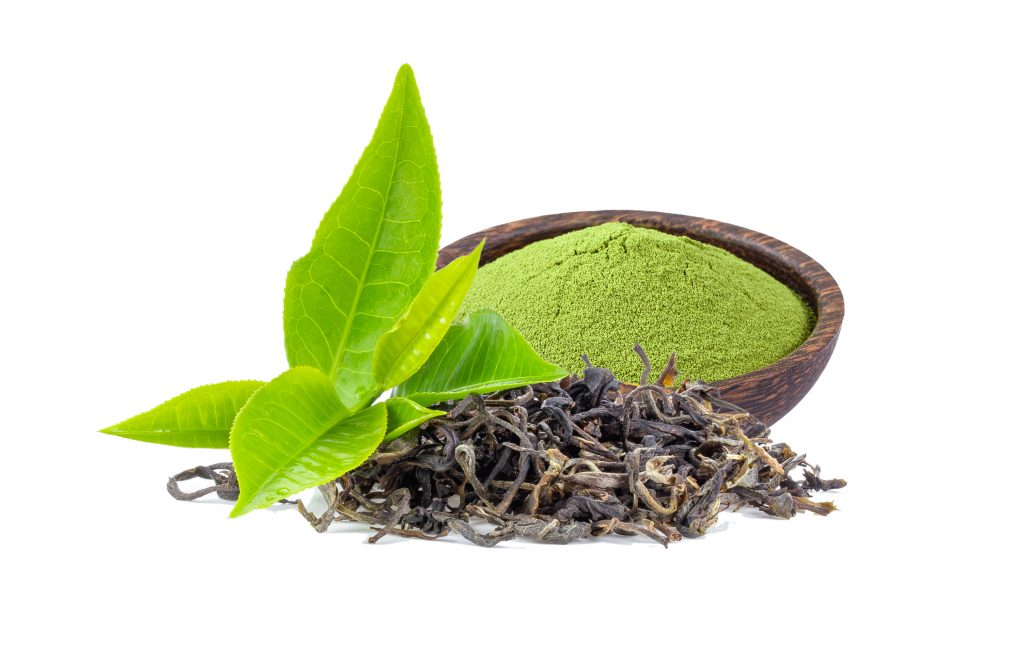 Studies examining the effects of green tea extract on hair pay special attention to the active catechin, EGCG (2)