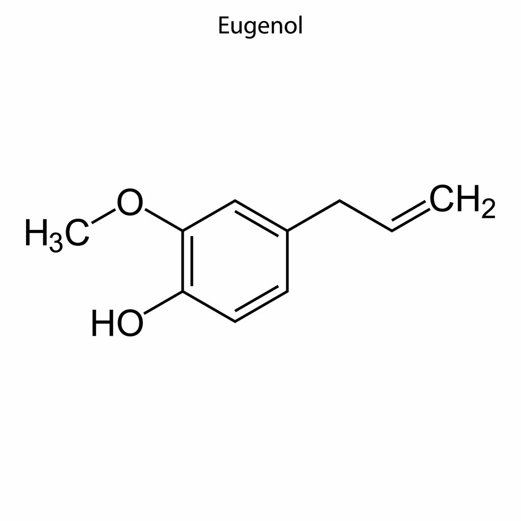 The role of eugenol in hair health has come under scrutiny by the scientific world