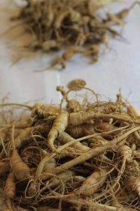 Red ginseng extract hair benefits have been observed in both human and mouse hair follicles (1, 5 ,7)