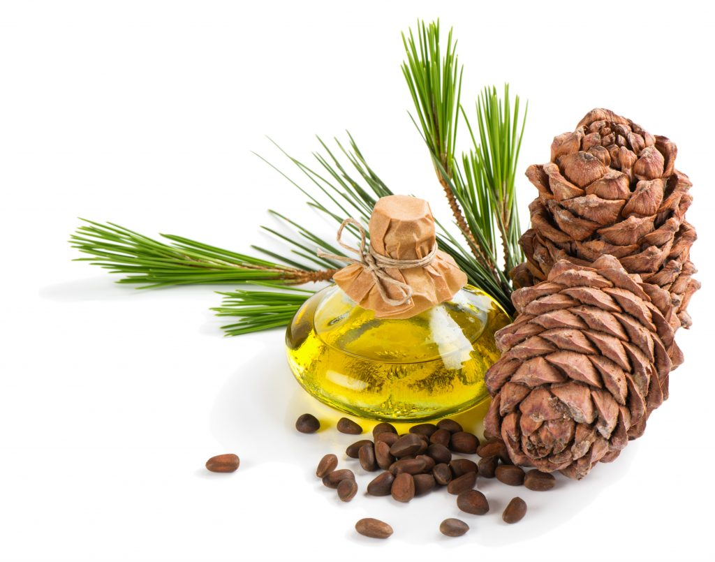 Pine oil or Tall oil which is derived from the seeds, acorns, branches of pine trees is being researched for its possible beneficial effects on hair growth