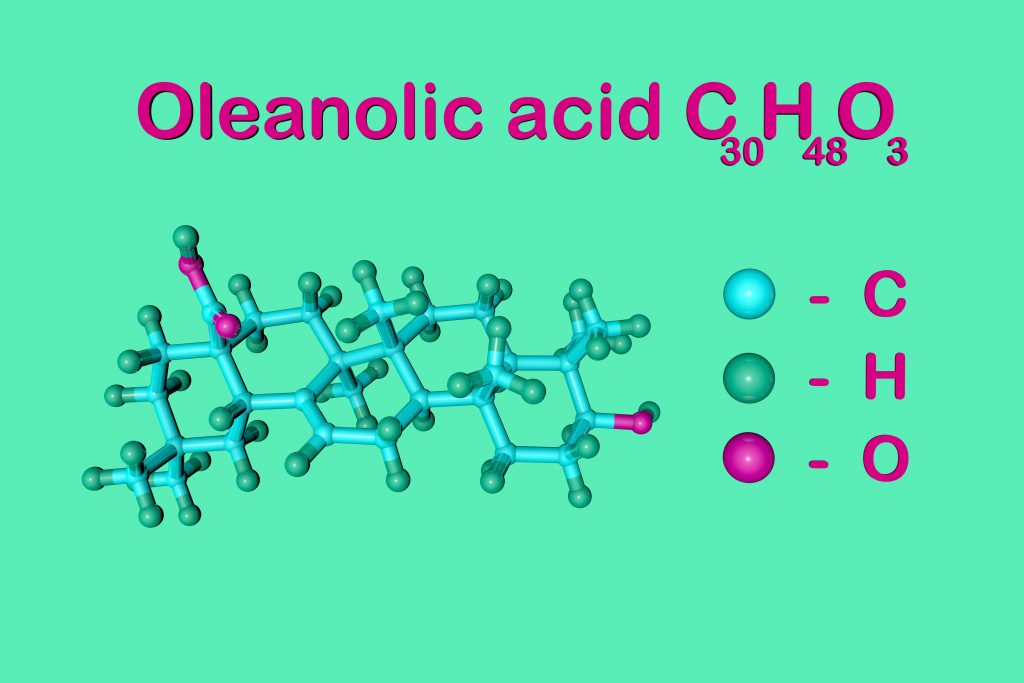 Oleanolic acid is a botanical extract and a promising phytochemical that is being studied for its role in hair loss and hair growth