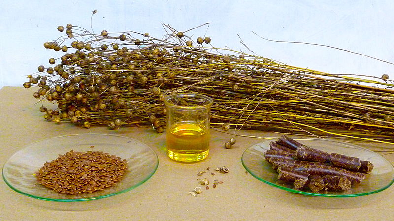 Flaxseed oil for hair growth may be effective due to its rich supply of phytochemical constituents