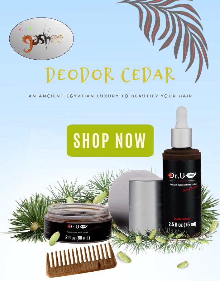 Deodor Cedar is an ingredient in our Main Musk hair pomade and lotion - Dr.UGro Gashee