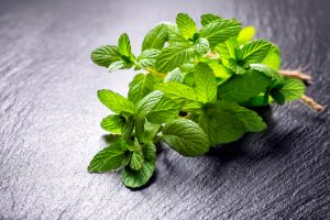 a whiff of peppermint oil every two hours for five days straight. By the study's end, the subjects claimed feeling drastically lower levels of hunger.