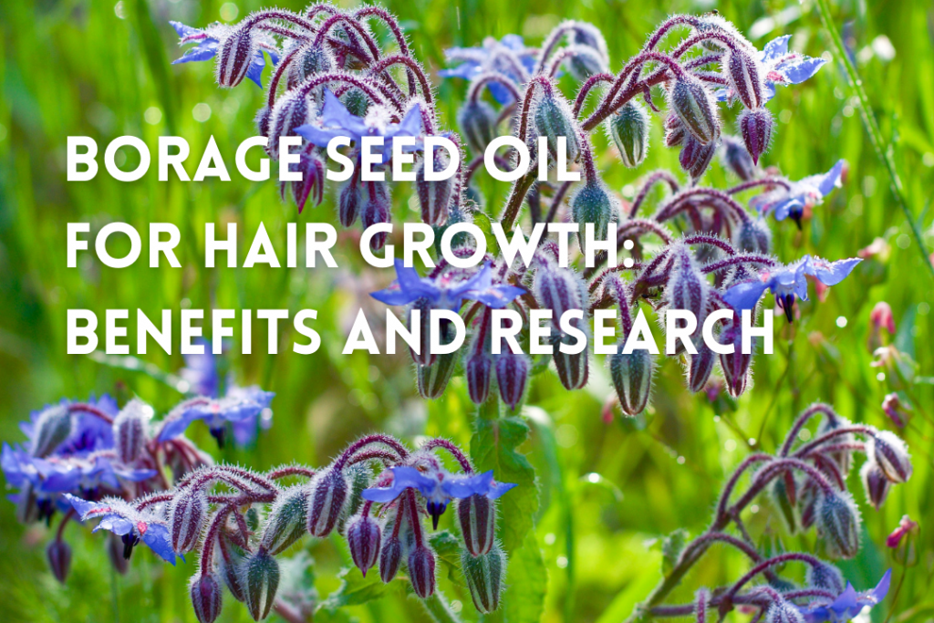 Borage seed oil benefits for hair growth and health - Dr. UGro Gashee